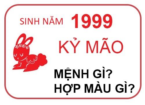 sinh-năm-1999-mệnh-gì