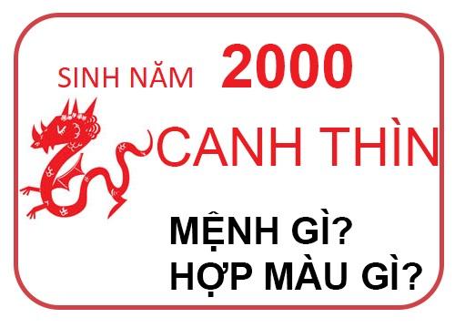 sinh-nam-2000-menh-gi