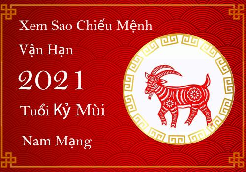 Sinh-nam-1991-menh-gi-1
