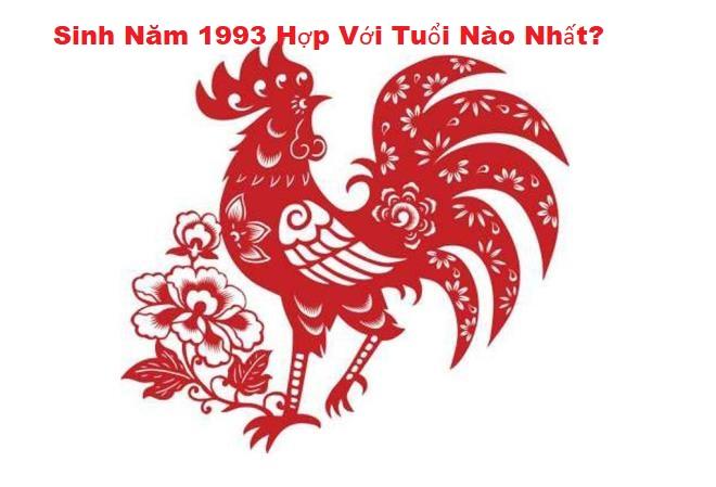 sinh-nam-1993-hop-voi-tuoi-nao