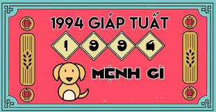 sinh-nam-1994-menh-gi