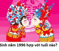 sinh-nam-1996-hop-voi-tuoi-nao