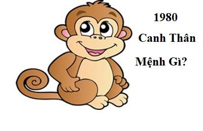 Sinh-nam-1980-menh-gi