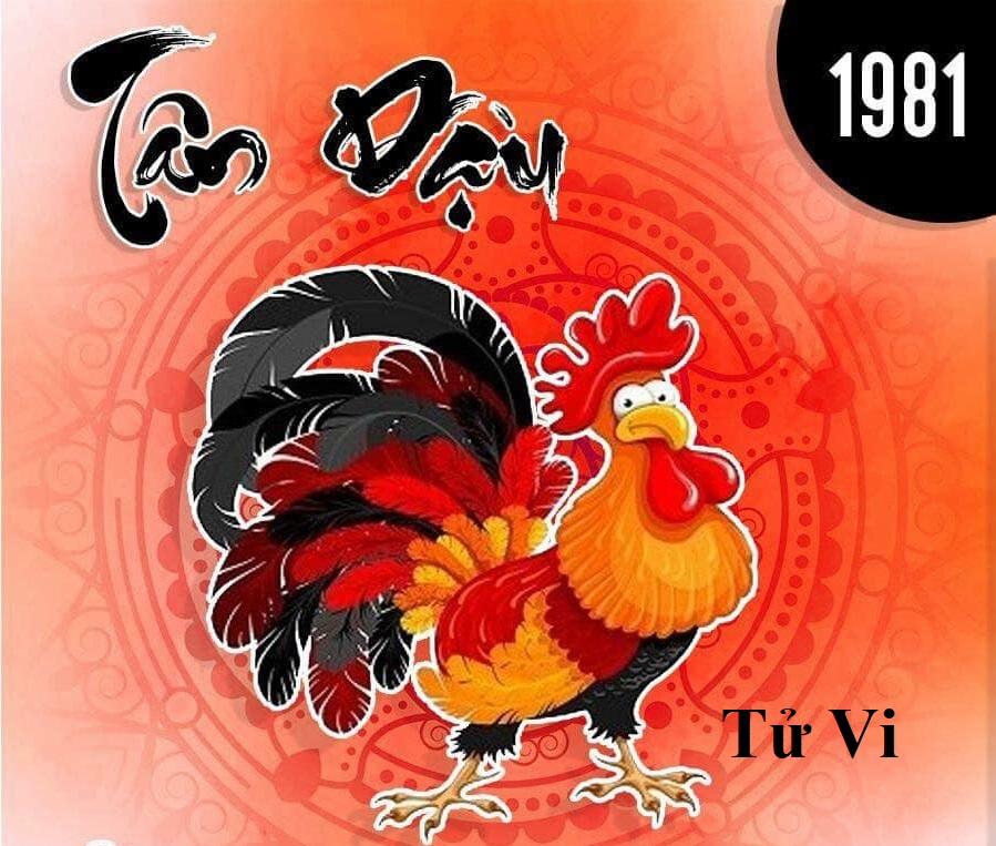 Sinh-nam-1981-menh-gi-2