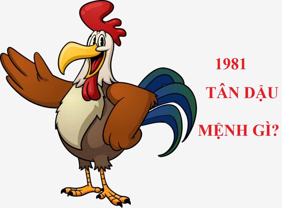 Sinh-nam-1981-menh-gi