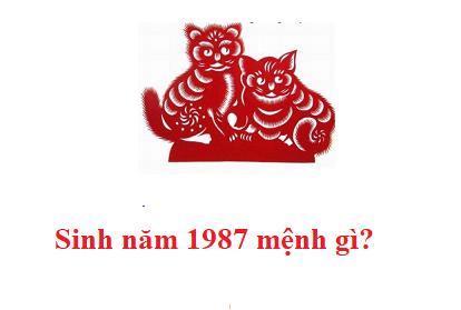 sinh-nam-1987-menh-gi-1