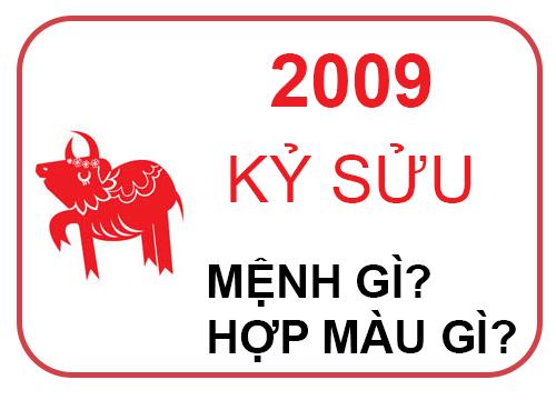 sinh-nam-2009-menh-gi