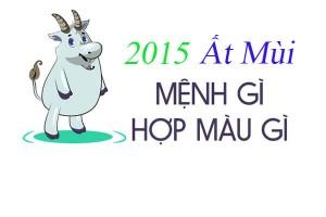 sinh-nam-2015-menh-gi
