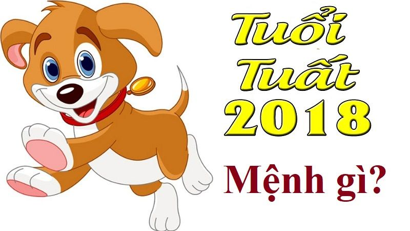 sinh-nam-2018-menh-gi