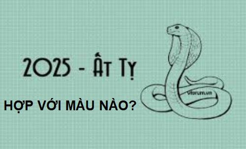sinh-nam-2025-hop-voi-mau-nao