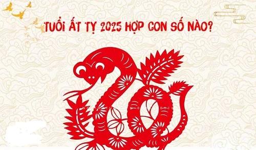 sinh-nam-2025-hop-voi-so-nao
