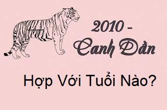 sinh-nam-2010-menh-gi-1